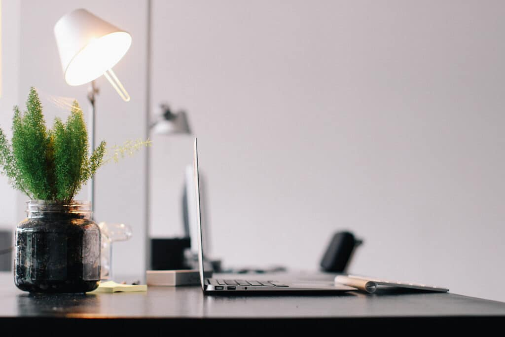 small-plant-on-desk-provides-inexpensive-biophilic-element-and-wellness-focused-decoration